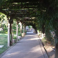 Photo taken at V. Sattui Winery by Hope on 6/18/2013