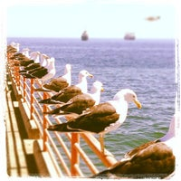 Photo taken at Caleta Portales by Victor M. on 3/3/2013