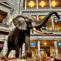 Photo taken at National Museum of Natural History by Daryl W. on 7/4/2013
