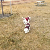 Photo taken at Badger Mountain Dog Park by Cynthia E. on 1/2/2014