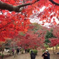 Photo taken at 源氏山公園 by shinoboo.gk on 12/1/2012