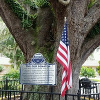 Photo taken at The Old Senator Tree by Angie W. on 9/3/2016