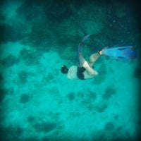 Photo taken at Similan Islands by Devin D. on 5/6/2013