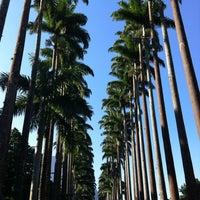 Photo taken at Jardim Botânico do Rio de Janeiro by Bianca E. on 7/12/2013