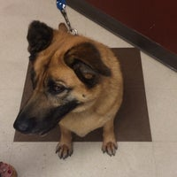 Photo taken at PetSmart by Jessica C. on 3/9/2014