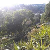 Photo taken at Dunedin Botanic Garden by Damien C. on 5/31/2013