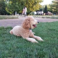 Photo taken at Broad Ripple Park Canine Companion Area by Jon B. on 7/24/2013