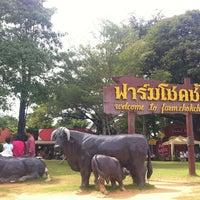Photo taken at Farm Chokchai by ✨💓TeddyBearYUi G. on 10/23/2012