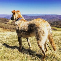 Photo taken at Max Patch by Zack B. on 4/3/2016