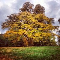 Photo taken at Fort Greene Park by kenyatta c. on 10/27/2012