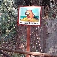 Photo taken at Riserva naturale Tor Caldara by alesstar on 3/16/2014