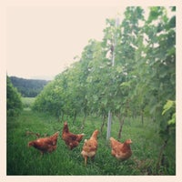 Photo taken at Stinson Vineyards by Stinson V. on 7/15/2013