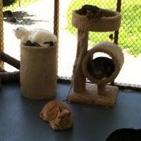 Photo taken at Animal rescue Inc by Wendy P. on 6/2/2014