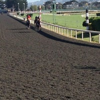 Photo taken at Golden Gate Fields by Cary L. on 6/16/2013