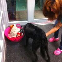 Photo taken at Animal Welfare League of Arlington by Lora N. on 3/28/2013