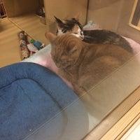 Photo taken at PetSmart by Yai H. on 12/24/2013