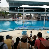 Photo taken at Underwater World And Dolphin Lagoon by Mong M. on 11/8/2012
