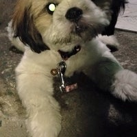 Photo taken at Animal Shelter Vet Clinic by Jacqueline C. on 5/9/2016