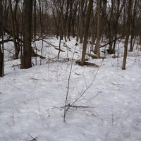 Photo taken at Downer Woods by Shawn R. on 3/14/2013