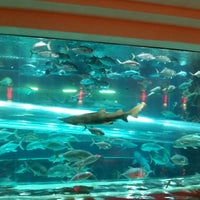 Photo taken at Golden Nugget Rush Tower by Nik S. on 11/1/2014
