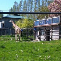 Photo taken at Greater Vancouver Zoo by Shawn C. on 5/5/2013