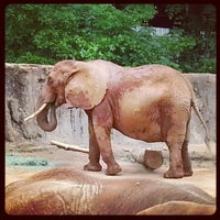 Photo taken at Riverbanks Zoo And Gardens by Athena S. on 4/27/2013