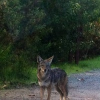 Photo taken at Franklin Canyon Park by Lisa P. on 12/13/2012
