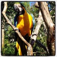 Photo taken at Gramado Zoo by Flávio G. on 10/19/2012