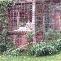 Photo taken at Exotic Feline Rescue Center by Kara E. on 8/8/2014