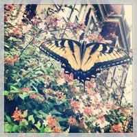Photo taken at University of North Carolina at Chapel Hill by Jordan B. on 8/23/2013
