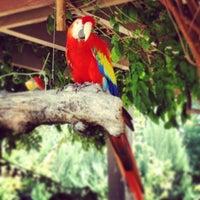 Photo taken at Henry Doorly Zoo and Aquarium by Jordan B. on 7/1/2013
