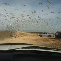 Photo taken at Eastern Sanitary Landfill Solid Waste Management Facility by Elizabeth H. on 11/10/2012