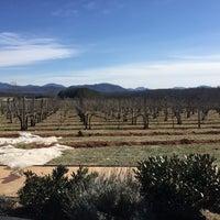 Photo taken at Afton Mountain Vineyards by Amanda T. on 2/14/2016