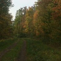 Photo taken at Three  Rivers Wildlife Management Area by Ed S. on 10/16/2016