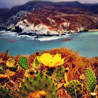 Photo taken at Santa Catalina Island by Kristofer V. on 6/14/2013