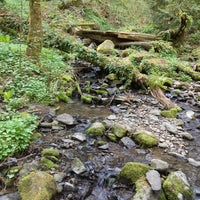 Photo taken at Tryon Creek State Park by PDX P. on 4/1/2013