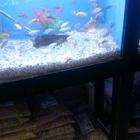 Photo taken at 405 Tropical Fish by Mike B. on 12/6/2016