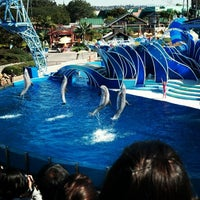 Photo taken at Dolphin Stadium by Jamie L. on 2/12/2013
