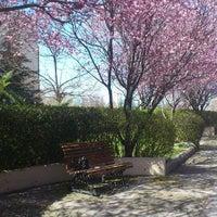 Photo taken at Bilkent University by Sularkralicesi on 3/31/2013