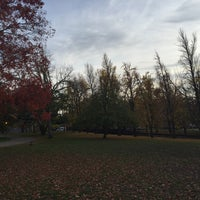 Photo taken at West Park Dog Park by Wes B. on 11/18/2015