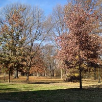 Photo taken at Central Park by Anthony C. on 11/22/2012