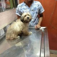 Photo taken at Animal Shelter Vet Clinic by Cedrick S. on 7/1/2013