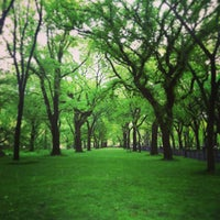 Photo taken at Central Park by Neue Galerie N. on 7/8/2013