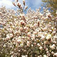 Photo taken at Belmonte Arboretum by Hanny v. on 4/28/2013