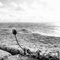 Photo taken at Tropical beach by Carl-Johan M. on 9/15/2012