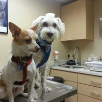 Photo taken at McKillip Animal Hospital by Laura K. on 7/15/2013