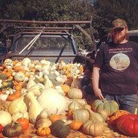 Photo taken at Healdsburg Farmers' Market by Mindy J. on 10/11/2014