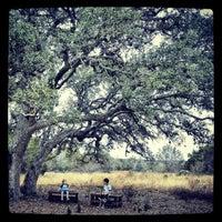 Photo taken at Lady Bird Johnson Wildflower Center by Kipling O. on 12/15/2012