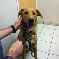 Photo taken at Deer Creek Animal Hospital by Austin Y. on 10/5/2012