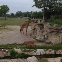 Photo taken at Toledo Zoo by Angie B. on 6/9/2013
